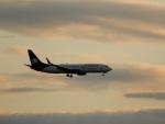 kiyohsさんが、シアトル タコマ国際空港で撮影したアエロメヒコ航空 737-852の航空フォト(飛行機 写真・画像)