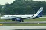 セブンさんが、シンガポール・チャンギ国際空港で撮影したインディゴ A320-232の航空フォト(飛行機 写真・画像)