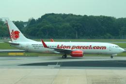 セブンさんが、シンガポール・チャンギ国際空港で撮影したライオン・エア 737-8GPの航空フォト(飛行機 写真・画像)