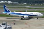 SFJ_capさんが、成田国際空港で撮影した全日空 A320-271Nの航空フォト(写真)