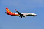beimax55さんが、成田国際空港で撮影した海南航空 737-84Pの航空フォト(写真)