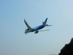 kiyohsさんが、上海虹橋国際空港で撮影した中国南方航空 787-8 Dreamlinerの航空フォト(写真)