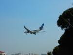 kiyohsさんが、上海虹橋国際空港で撮影した中国南方航空 A330-243の航空フォト(飛行機 写真・画像)