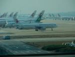 kiyohsさんが、上海浦東国際空港で撮影した中国東方航空 A320-232の航空フォト(写真)