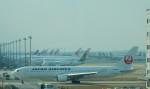 kiyohsさんが、上海浦東国際空港で撮影した日本航空 767-346/ERの航空フォト(飛行機 写真・画像)