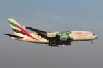 安芸あすかさんが、成田国際空港で撮影したエミレーツ航空 A380-861の航空フォト(写真)