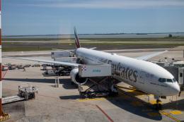 チャッピー・シミズさんが、ヴェネツィア マルコ・ポーロ国際空港で撮影したエミレーツ航空 777-31H/ERの航空フォト(飛行機 写真・画像)