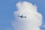 レガシィさんが、フジテレビ25階球体展望室で撮影した全日空 A321-272Nの航空フォト(写真)