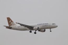 天王寺王子さんが、マスカット国際空港で撮影したチャム・ウイングス・エアラインズ A320-212の航空フォト(飛行機 写真・画像)