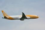 アルビレオさんが、成田国際空港で撮影したスクート 787-9の航空フォト(写真)