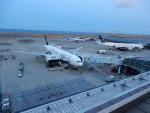 kiyohsさんが、羽田空港で撮影した全日空 777-281の航空フォト(飛行機 写真・画像)