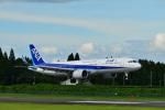 HS888さんが、鹿児島空港で撮影した全日空 A321-272Nの航空フォト(写真)