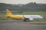 keitsamさんが、成田国際空港で撮影したバニラエア A320-214の航空フォト(飛行機 写真・画像)
