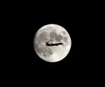 Dreamliner_NRT51さんが、成田国際空港で撮影したティーウェイ航空 737-8Q8の航空フォト(写真)