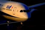 Hiro-hiroさんが、羽田空港で撮影した全日空 787-9の航空フォト(写真)