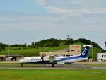 ナナオさんが、石見空港で撮影したANAウイングス DHC-8-402Q Dash 8の航空フォト(写真)