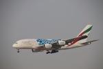 だいすけさんが、ドバイ国際空港で撮影したエミレーツ航空 A380-861の航空フォト(写真)