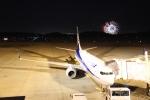 LEVEL789さんが、岡山空港で撮影した全日空 737-881の航空フォト(写真)