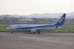 flyflygoさんが、高知空港で撮影した全日空 737-881の航空フォト(写真)