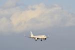 Orange linerさんが、新千歳空港で撮影したバニラエア A320-214の航空フォト(写真)