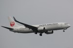 keitsamさんが、羽田空港で撮影した日本航空 737-846の航空フォト(写真)