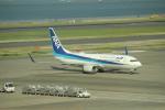 keitsamさんが、羽田空港で撮影した全日空 737-881の航空フォト(飛行機 写真・画像)