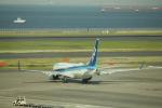 keitsamさんが、羽田空港で撮影した全日空 737-881の航空フォト(写真)