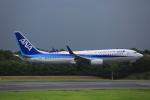 みるぽんたさんが、成田国際空港で撮影した全日空 737-881の航空フォト(写真)