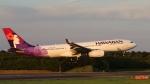raichanさんが、成田国際空港で撮影したハワイアン航空 A330-243の航空フォト(写真)