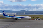 jjieさんが、関西国際空港で撮影した全日空 737-881の航空フォト(写真)