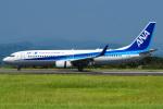 renseiさんが、静岡空港で撮影した全日空 737-881の航空フォト(写真)