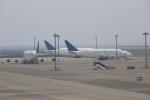 kwnbさんが、中部国際空港で撮影したボーイング 747-409(LCF) Dreamlifterの航空フォト(写真)
