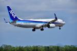 Dojalanaさんが、函館空港で撮影した全日空 737-8ALの航空フォト(写真)