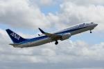 牡丹さんが、伊丹空港で撮影した全日空 737-881の航空フォト(写真)