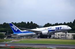 T.Sazenさんが、成田国際空港で撮影した全日空 787-8 Dreamlinerの航空フォト(写真)
