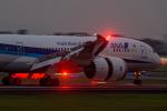 いっち〜@RJFMさんが、宮崎空港で撮影した全日空 787-8 Dreamlinerの航空フォト(写真)