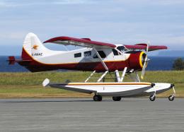 voyagerさんが、ポートハーディー空港で撮影したWILDERNESS SEAPLANES DHC-2 Beaver Mk.1の航空フォト(写真)