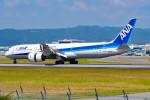 Astechnoさんが、伊丹空港で撮影した全日空 787-9の航空フォト(写真)