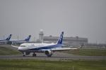 シャークレットさんが、新千歳空港で撮影した全日空 A321-272Nの航空フォト(写真)