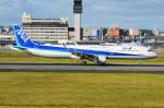 ITM58さんが、伊丹空港で撮影した全日空 A321-211の航空フォト(写真)