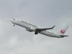 ジジさんが、福岡空港で撮影した日本航空 777-289の航空フォト(写真)