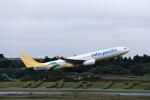 T.Sazenさんが、成田国際空港で撮影したセブパシフィック航空 A330-343Xの航空フォト(飛行機 写真・画像)
