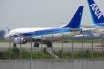 レドームさんが、羽田空港で撮影した? 737-500の航空フォト(写真)