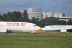 パピヨンさんが、成田国際空港で撮影したイースター航空 737-86Nの航空フォト(写真)