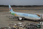 tassさんが、成田国際空港で撮影した大韓航空 A300B4-622Rの航空フォト(写真)