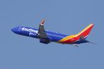masa707さんが、サンフランシスコ国際空港で撮影したサウスウェスト航空 737-8-MAXの航空フォト(写真)