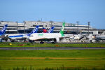 beimax55さんが、成田国際空港で撮影したエバー航空 787-10の航空フォト(写真)