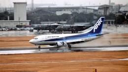 ハミングバードさんが、名古屋飛行場で撮影したエアーニッポン 737-5Y0の航空フォト(飛行機 写真・画像)