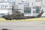 Chofu Spotter Ariaさんが、立川飛行場で撮影した陸上自衛隊 AH-1Sの航空フォト(写真)