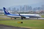 Izumixさんが、伊丹空港で撮影した全日空 737-881の航空フォト(写真)